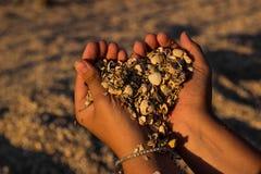 Ręki młoda dziewczyna z garść seashells i piasek w postaci serca w miękkim zmierzchu słońcu na plaży obraz royalty free