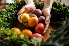 Ręki młodej kobiety zbliżenie, trzyma wiązkę Easter jajka Ona ręki otacza zieloną rośliną fotografia royalty free