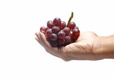 Ręki mienia winogrona odizolowywający Zdjęcie Royalty Free