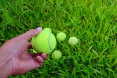 ręki mienia zieleni tenisowa piłka Fotografia Royalty Free