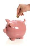 Ręki, monety i prosiątka bank, Zdjęcie Royalty Free