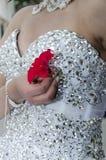 Ręki panny młodej ` s kwiatu bielu szkarłatna suknia z koralikami Zdjęcia Royalty Free