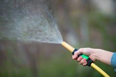 Ręki podlewania ogród z kropidłem, zamyka up obraz stock