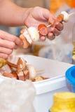 Ręki przygotowywa mięsa i warzyw kebab Obraz Royalty Free