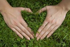 Ręki robią sercu na zielonej trawie Obrazy Stock