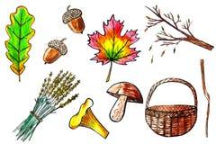 Ręki rysować akwareli jesieni ikony Obrazy Royalty Free