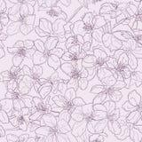 Ręki rysować bezszwowe deseniowe tło linii czereśniowego okwitnięcia menchie Obrazy Royalty Free