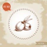 Ręki rysować nakreślenie stylu oliwki bez ziarna Oliwa z oliwek i zdrowa karmowa wektorowa ilustracja Zdjęcia Royalty Free