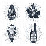 Ręki rysować odznaki ustawiać z sosna rożkiem, liściem klonowym, dębowego drzewa liściem i radio ilustracjami, Obraz Stock