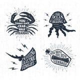 Ręki rysować textured rocznik etykietki ustawiają z wektorowymi ilustracjami Fotografia Stock