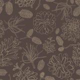Ręki rysować wektorowe ilustracje Bezszwowy wzór z sosnowymi rożkami acorns jesień tła granicy projekta lasowy dębowy światło sło Zdjęcie Royalty Free