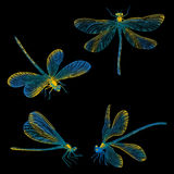 Ręki rysujący dragonflies ustawiający Zdjęcie Stock