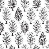 Ręki rysujący drzew nakreślenia, bezszwowy wzór Fotografia Royalty Free