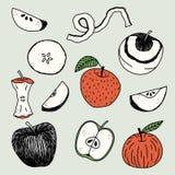 Ręki rysujący jabłka ilustracyjni Fotografia Royalty Free