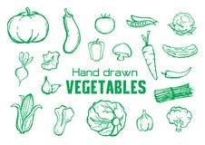 Ręki rysujący warzywa i owocowy kolekcja set ilustracji