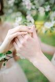 Ręki samiec i kobieta nad okwitnięcia drzewem Obrazy Stock
