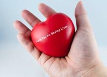 ręki serca czerwień Zdjęcie Royalty Free