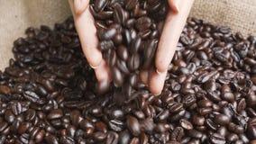 Ręki stawiają garści kawowe fasole w burlap torbie zdjęcie wideo