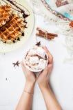 Ręki trzyma gorącej czekolady filiżankę z marshmallow, Belgijski gofr Obraz Royalty Free