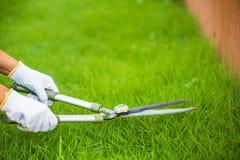 Ręki trzyma ogrodnictwo nożyce na zielonej trawie Zdjęcie Royalty Free