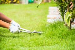 Ręki trzyma ogrodnictwo nożyce na zielonej trawie Fotografia Royalty Free