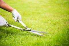Ręki trzyma ogrodnictwo nożyce na zielonej trawie Fotografia Stock
