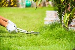 Ręki trzyma ogrodnictwo nożyce na zielonej trawie Obraz Royalty Free