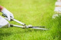 Ręki trzyma ogrodnictwo nożyce na zielonej trawie Obraz Stock