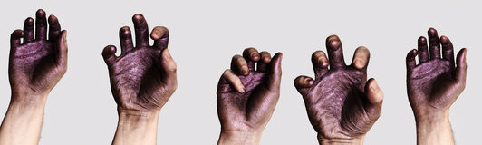 Ręki Ustawiać dla twój projekta Fotografia Stock