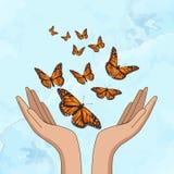 R?ki uwalnia pomara?czowych monarchicznych motyle r?wnie? zwr?ci? corel ilustracji wektora ilustracja wektor