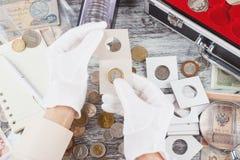Ręki w rękawiczka chwyta trzepnięciu z poborca monetą obraz royalty free