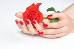 Ręki z czerwonym manicure'em target94_1_ róży Obraz Stock