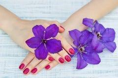 Ręki z menchia robiącymi manikiur paznokciami obrazy stock