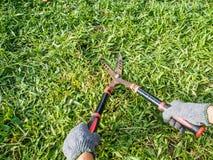 Rękojeści trawy strzyżenie wewnątrz graden Zdjęcia Stock