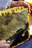 rżnięci honeycombs Zdjęcia Stock