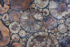 Rżnięta drzewna mozaika Obraz Stock