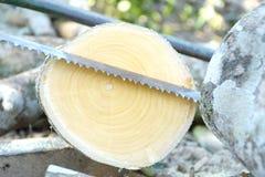 Rżnięty beli drewno, saw i Fotografia Stock