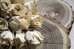Rżnięty drewno z wysuszonymi różami; suche róże na rżniętym drzewie Zdjęcie Royalty Free