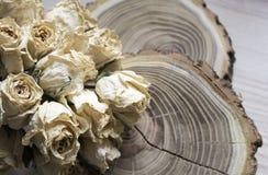 Rżnięty drewno z wysuszonymi różami; suche róże na rżniętym drzewie Obrazy Stock