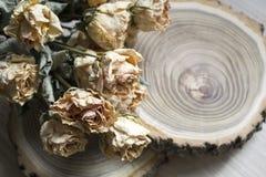 Rżnięty drewno z wysuszonymi różami; suche róże na rżniętym drzewie Zdjęcia Stock