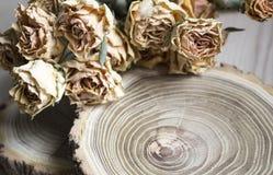 Rżnięty drewno z wysuszonymi różami; suche róże na rżniętym drzewie Zdjęcie Stock