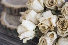 Rżnięty drewno z wysuszonymi różami; suche róże na rżniętym drzewie Obraz Royalty Free
