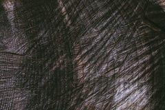 Rżnięty drzewnego bagażnika tło i tekstura Drewniana tekstura rżnięty drzewny bagażnik Zbliżenie widok stara drewniana tekstura A Obrazy Stock