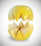 Rżnięty jabłko Obraz Royalty Free