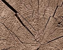 rżnięty przestarzały drewniany Fotografia Stock