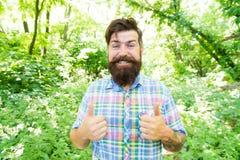 r Ατόμων γενειοφόρο υπόβαθρο δέντρων hipster πράσινο Συναισθηματικός εραστής φύσης Ο τύπος χαλαρώνει στη θερινή φύση στοκ φωτογραφίες