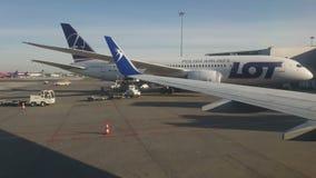 r Βαρσοβία r Ξεφορτώνοντας ΜΕΡΟΣ αερογραμμών αεροσκαφών πολωνικό Μια ομάδα εργαζομένων ξεφορτώνει το αεροπλάνο στο α απόθεμα βίντεο