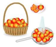 r Συγκομίστε μια ντομάτα σε ένα καλάθι Τα λαχανικά πλένονται σε ένα τρυπητό κάτω από το τρεχούμενο νερό Τεμαχισμένος σε ένα πιάτο διανυσματική απεικόνιση