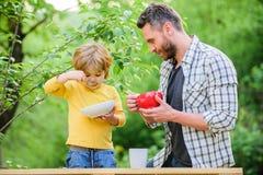r Συνήθειες διατροφής Η οικογένεια απολαμβάνει το σπιτικό γεύμα Προσωπικό παράδειγμα Ο πατέρας διδάσκει το γιο τρώει φυσικό στοκ φωτογραφίες