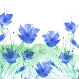 r Букет цветков голубых маков, wildflowers на белой изолированной предпосылке Акварель руки вычерченная иллюстрация штока
